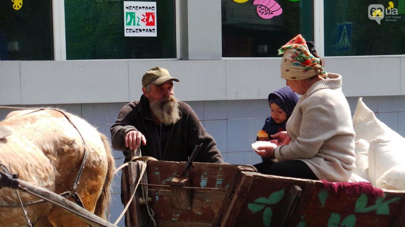 На лошадке в Донецк за пиццей (ФОТОФАКТ), фото-1