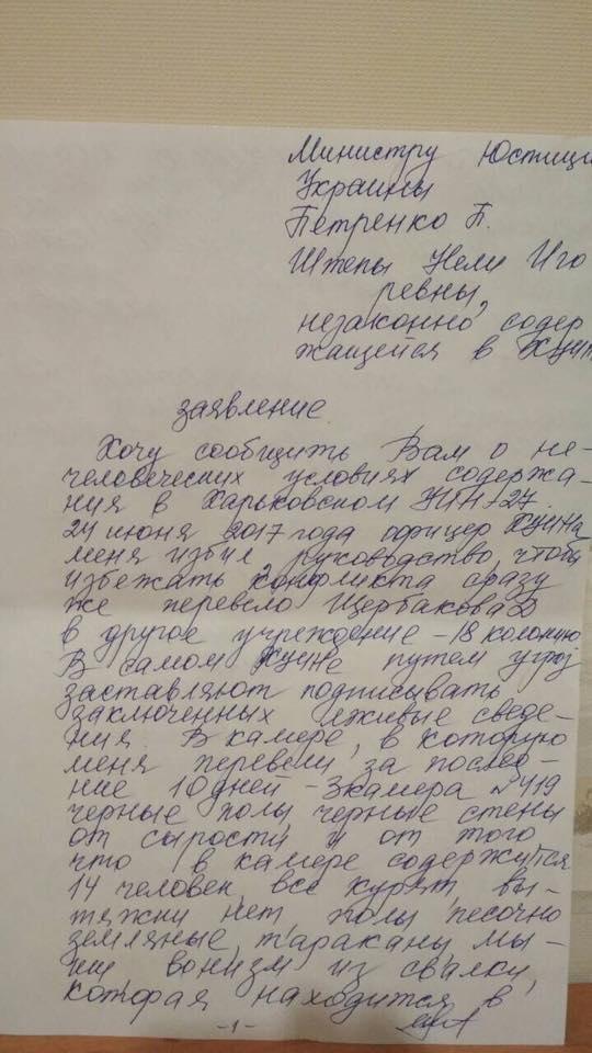 Нели Штепа заявила, что ее избили в Харьковском УИНе (Фото), фото-1