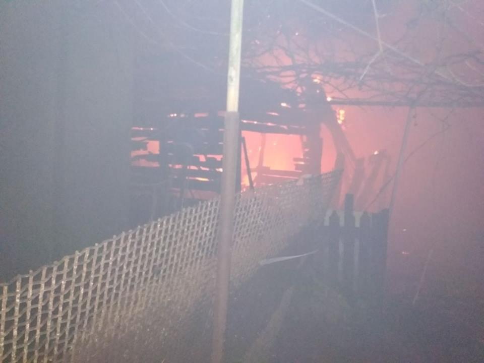 Залпы российских «Градов» повредили в Новолуганском школу, детсад и 47 домов (ФОТО), фото-1