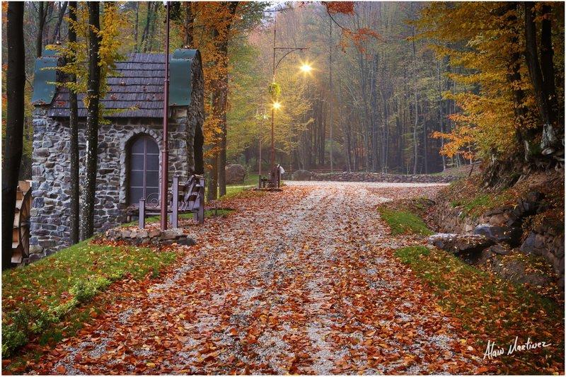Невероятная Украина. Замки, вкусная еда и винные погреба Закарпатья (КАРТА, ФОТО, ЦЕНЫ), фото-44