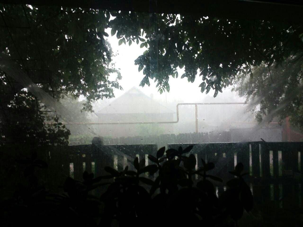 В оккупированной Горловке разбушевалась стихия: повалены деревья, снесены крыши (ФОТО), фото-1
