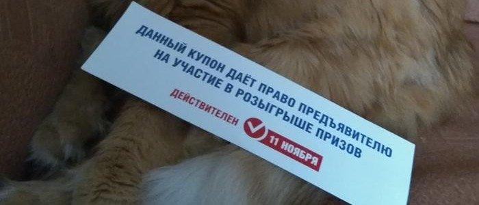 Дешевые овощи и лотерея: Как в Донецке заманивают на псевдовыборы (Фото), фото-3