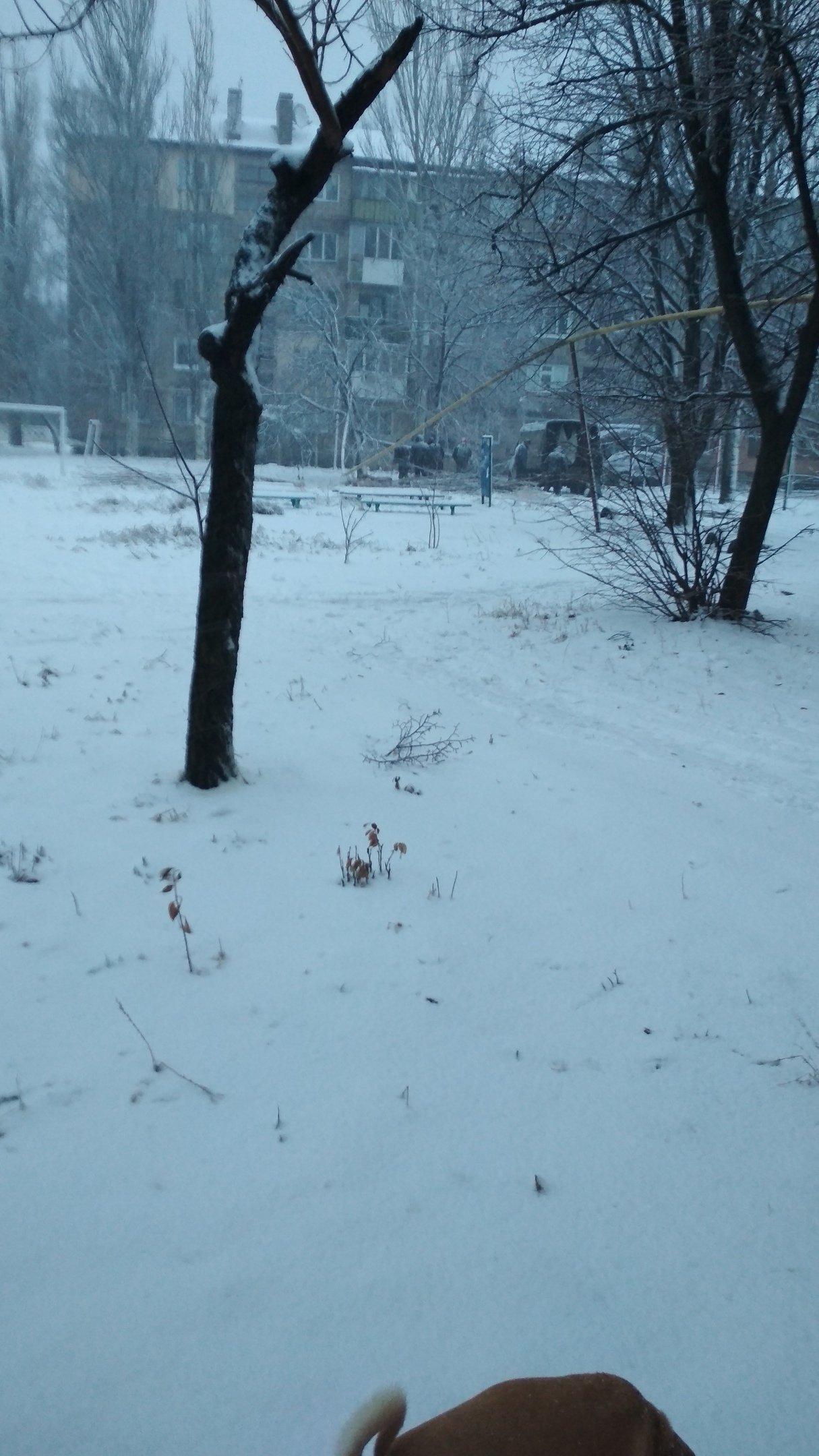 В Ясиноватой упавшее дерево повредило газопровод  - ФОТО, фото-1