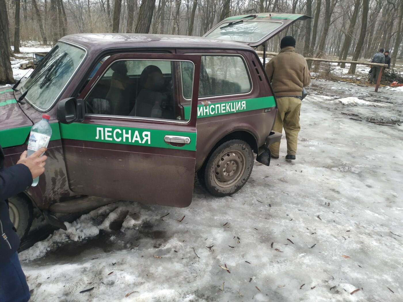 В Донецке массово вырубают деревья, - ФОТО, фото-2