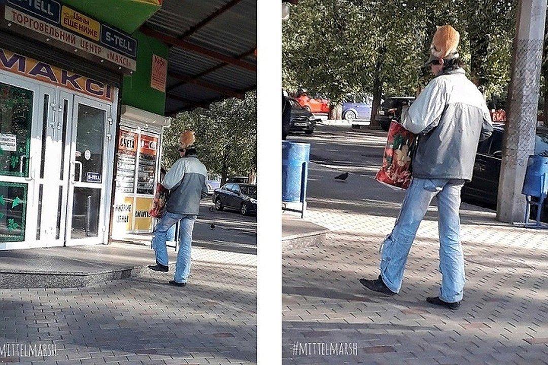 По улицам Донецка ходит мужчина с кошкой на голове, - ФОТО, фото-1