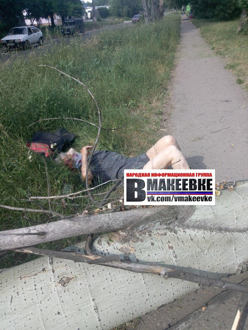 В Макеевке упавшее дерево убило женщину, - ФОТО , фото-1