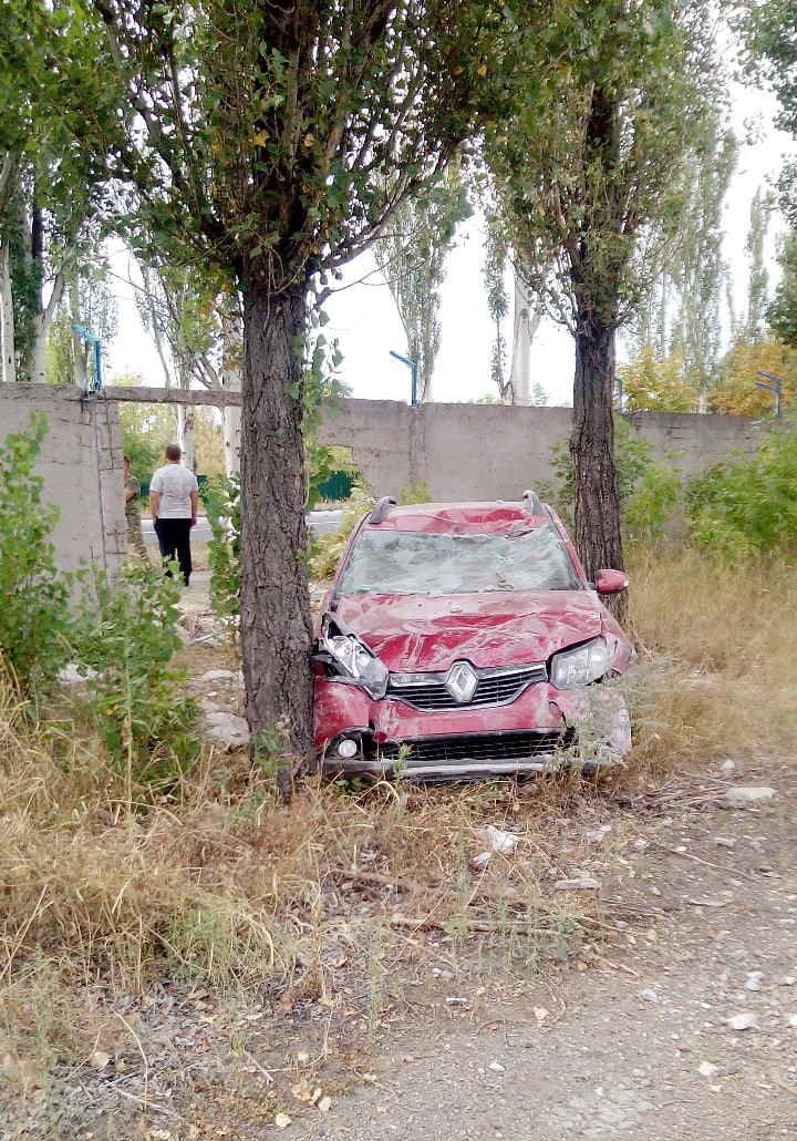 В Енакиево «Рено» пробил бетонный забор и врезался в дерево, - ФОТО, фото-1