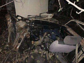 В оккупированной Горловке автомобиль врезался в дерево: погибли три человека, - ФОТО, фото-1