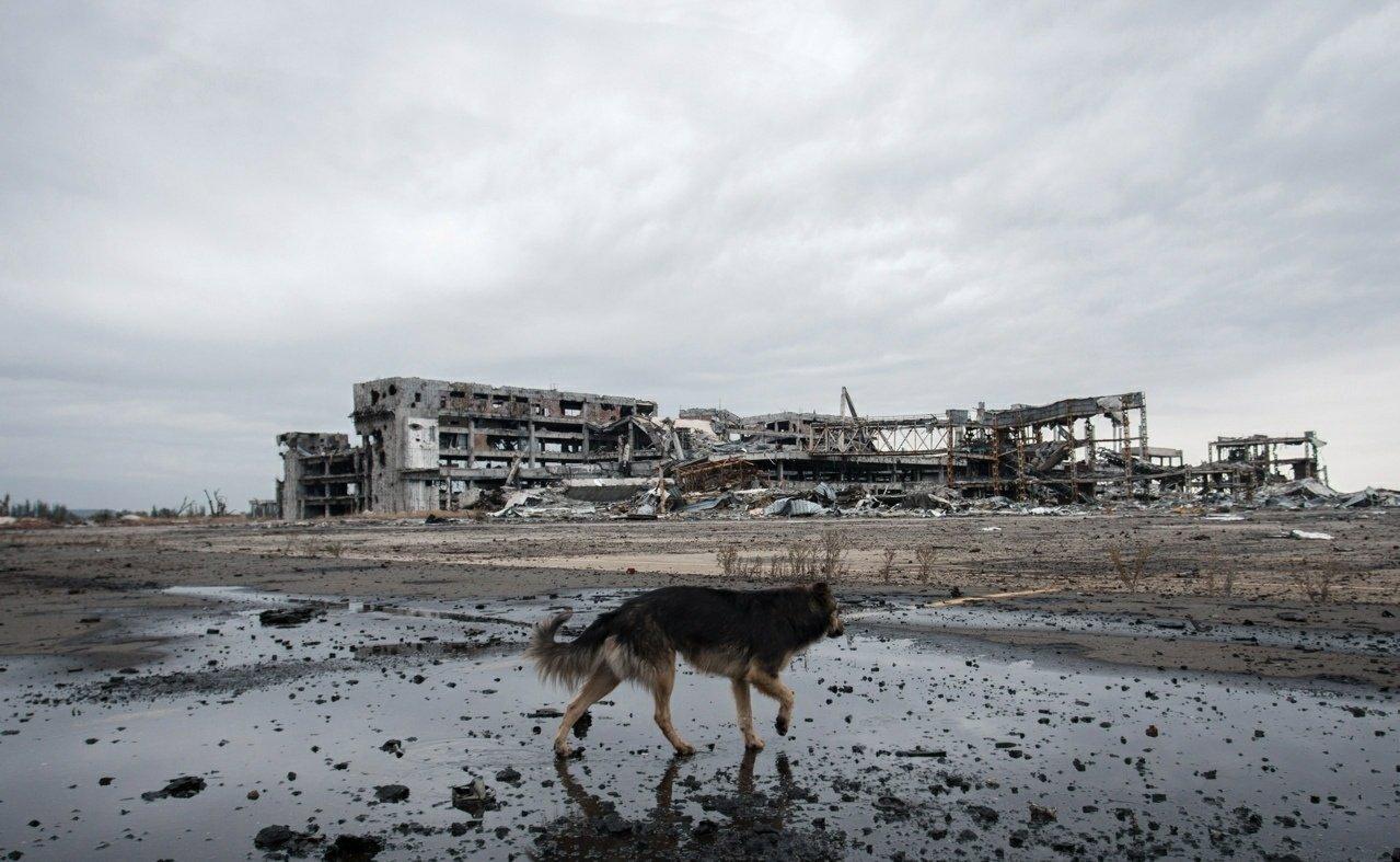 Пес и Донецкий аэропорт: два красноречивых фото с разницей в семь лет, фото-1