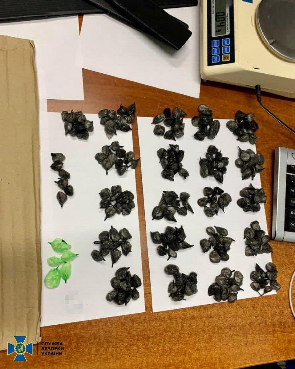 Из Украины в ОРДЛО через территории России поставляли наркотики в детских игрушках и колясках, - ФОТО, фото-2