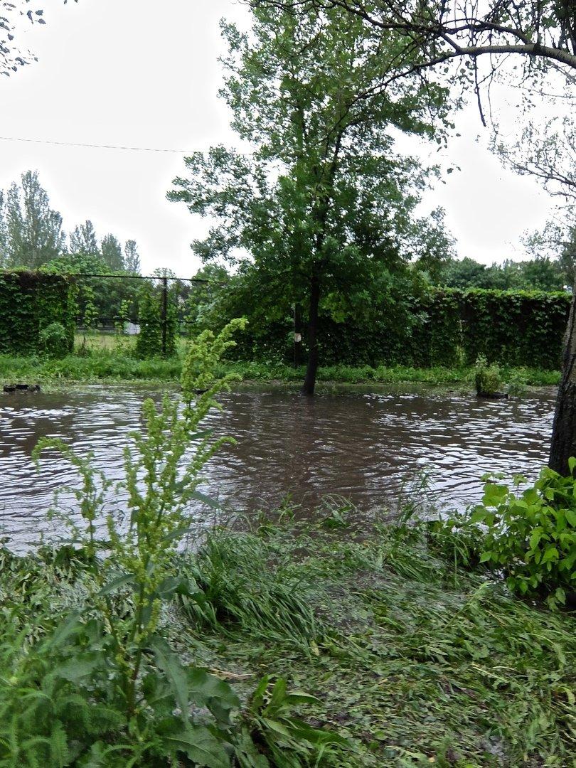 Непогода в Донецке: упавшие деревья, порванные провода и вышедшие из берегов ставки, - ФОТО, ВИДЕО, фото-5