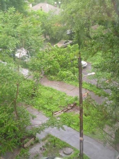 Непогода в Донецке: упавшие деревья, порванные провода и вышедшие из берегов ставки, - ФОТО, ВИДЕО, фото-4