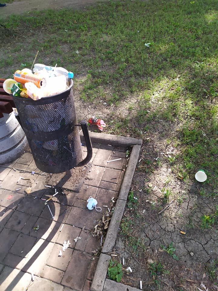 Окурки, объедки, умирающие розы: центр Донецка завален мусором, - ФОТО, фото-2