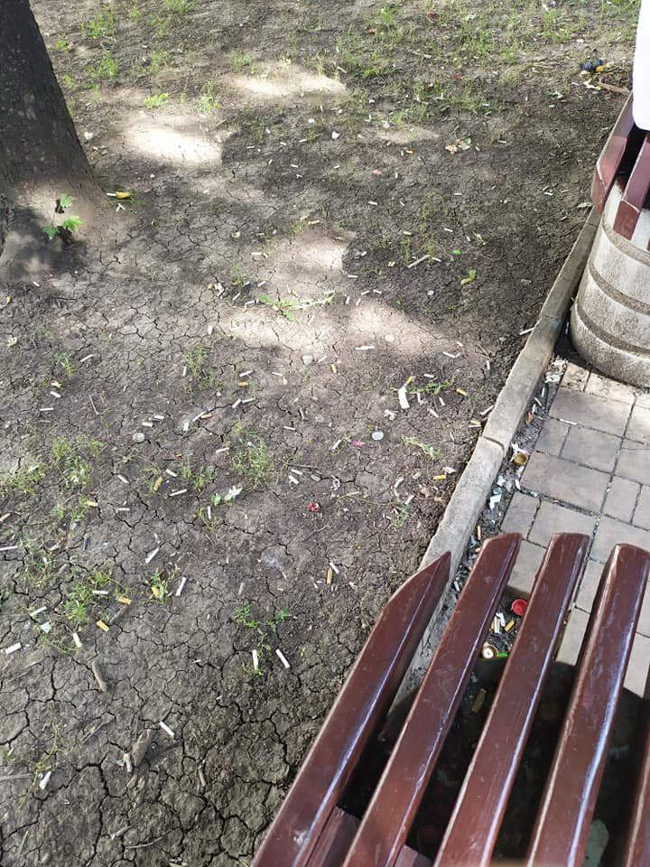 Окурки, объедки, умирающие розы: центр Донецка завален мусором, - ФОТО, фото-6