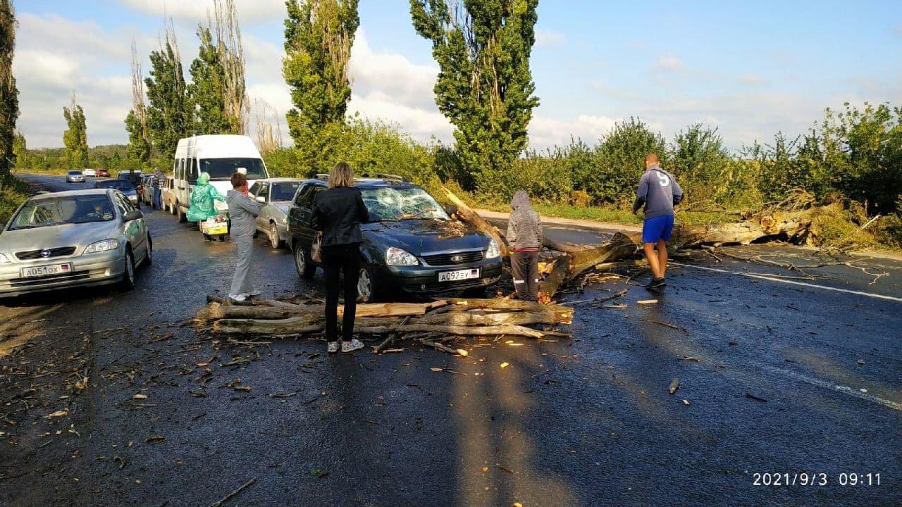 На незаконном КПП в Россию из ОРДО на авто упало дерево, - ФОТО, фото-3